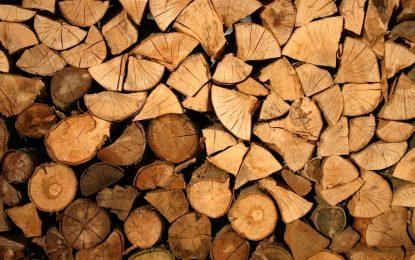 Les outils pour travailler le bois